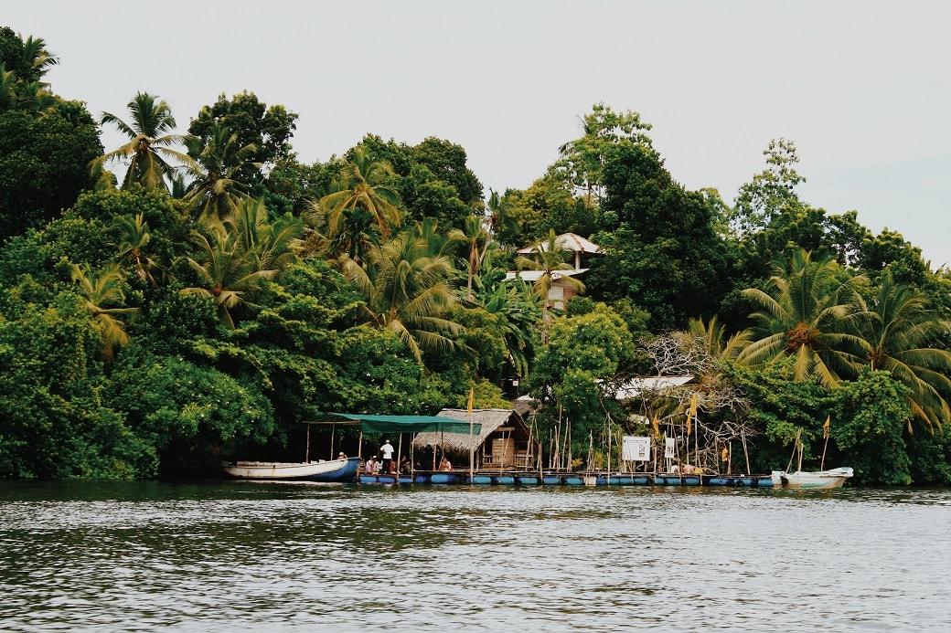 maduganga-boat-ride-sri-lanka-1