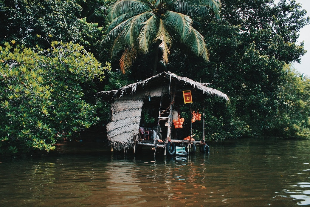 maduganga-boat-ride-sri-lanka-2