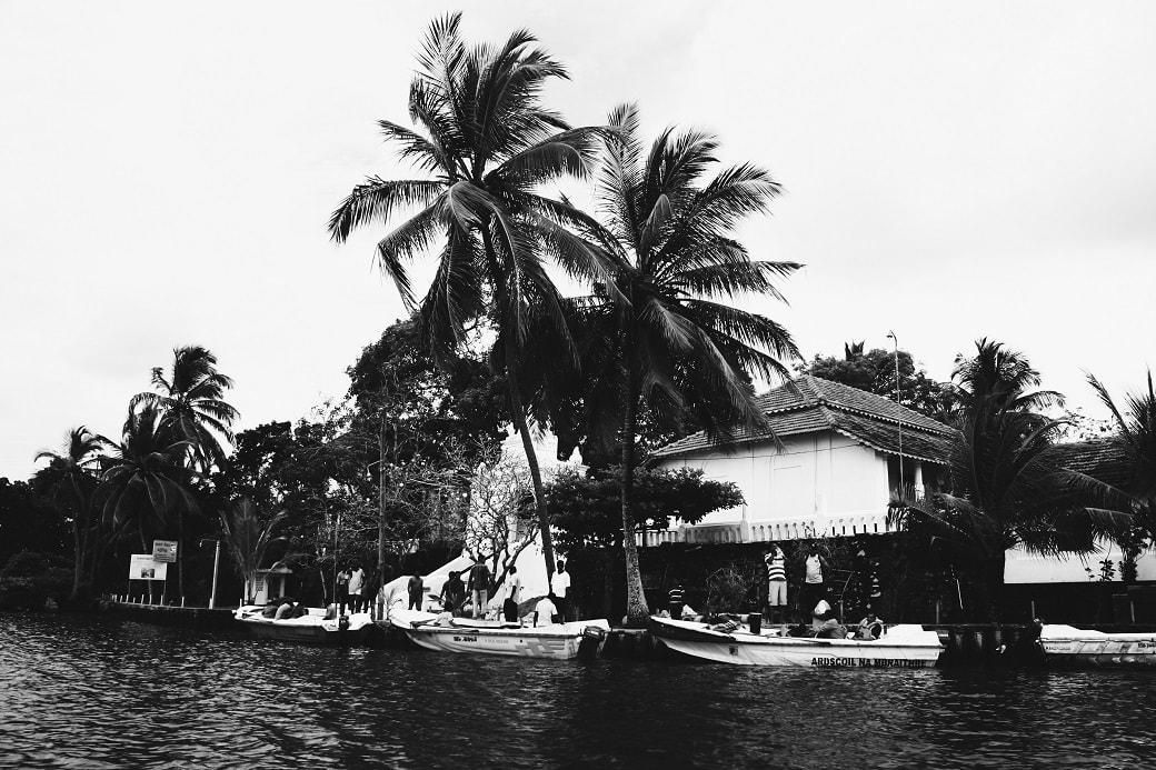 maduganga-boat-ride-sri-lanka-5