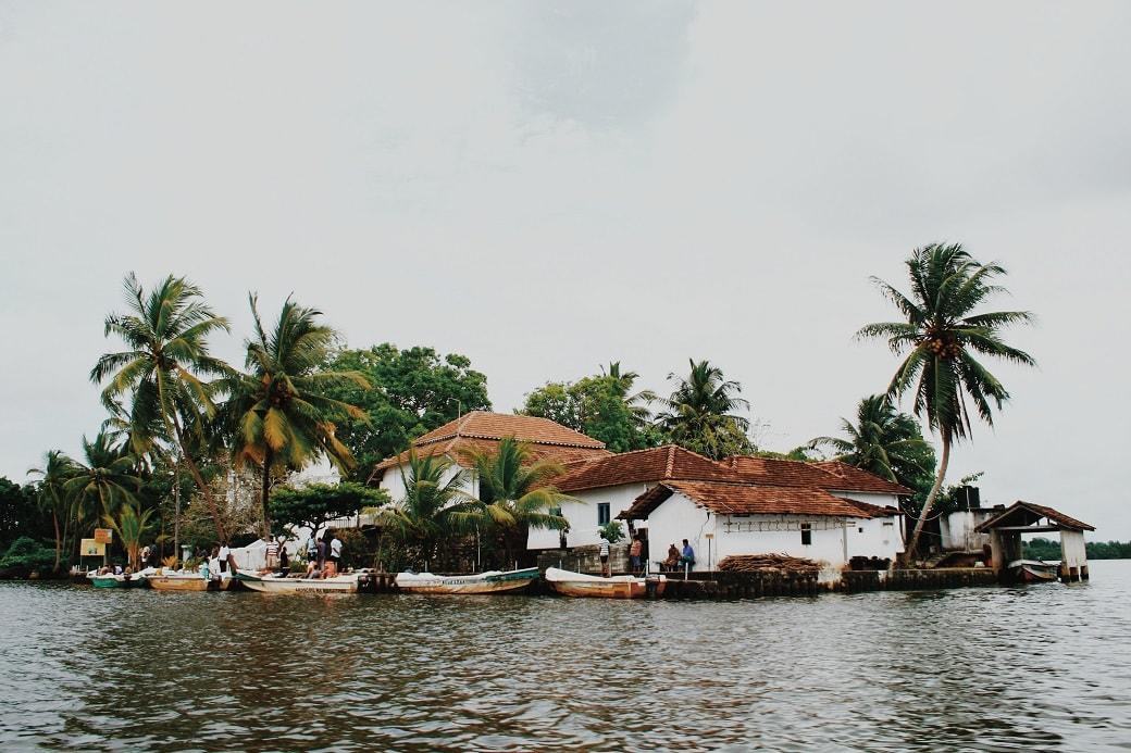 maduganga-boat-ride-sri-lanka-6