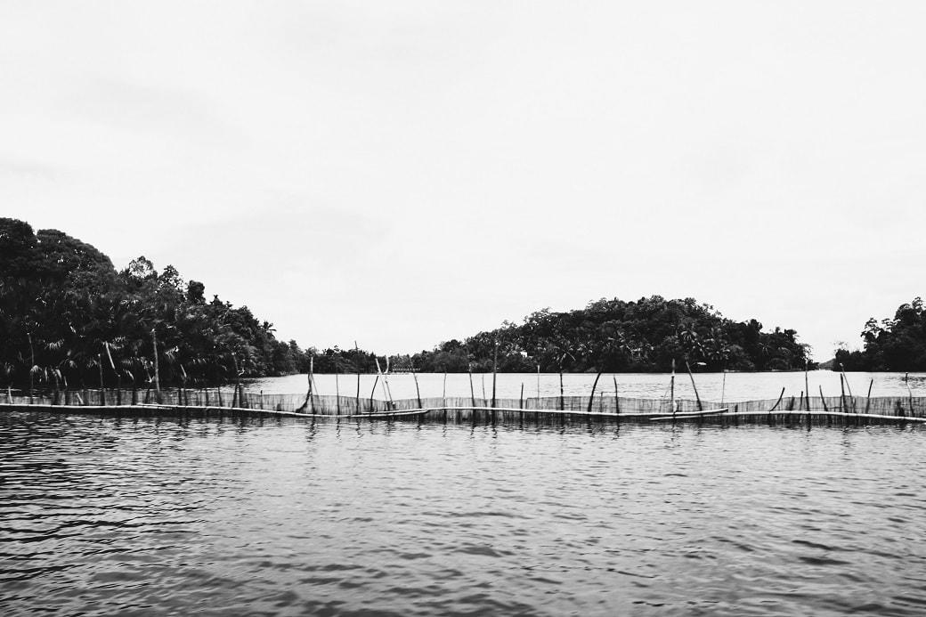 maduganga-boat-ride-sri-lanka-7
