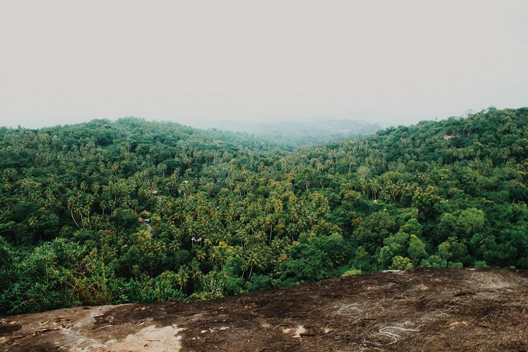 the-mulkirigala-rock-temple-monastery-mulgirigala-raja-maha-viharaya-sri-lanka-9