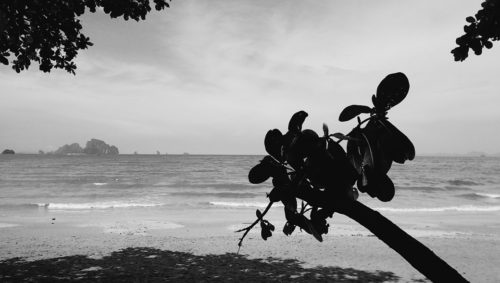 Ao Nang Beach Seascape