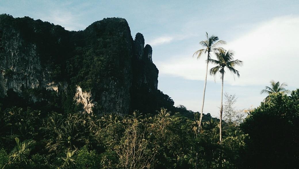 Ao Nang Cliifs Palms Jungles, Krabi, Thailand