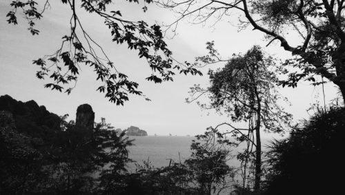 Ao Nang Monkey Trail Jungles Krabi