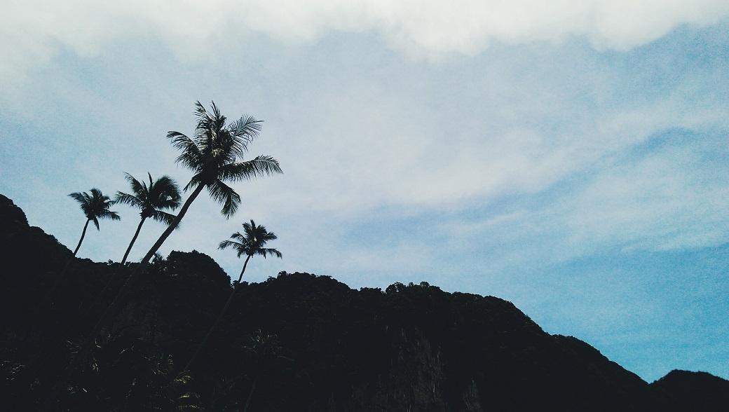 Pai Plong Beach Palms - Centara Grand Beach Resort